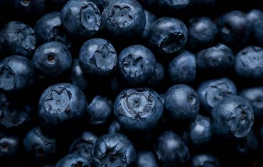 Berries are true food for the brain